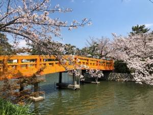 桑名市 九華公園(きゅうかこうえん)