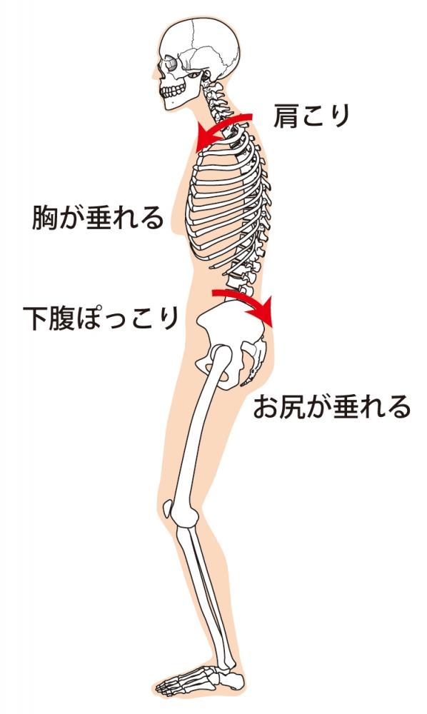骨盤の傾き